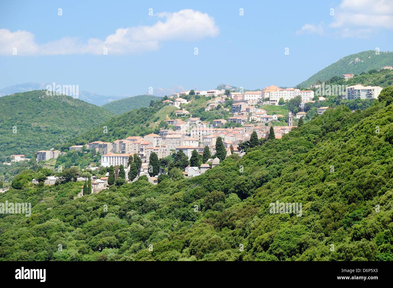 Vue de la ville de Sartene en montagnes boisées, Corse, France, Europe Photo Stock