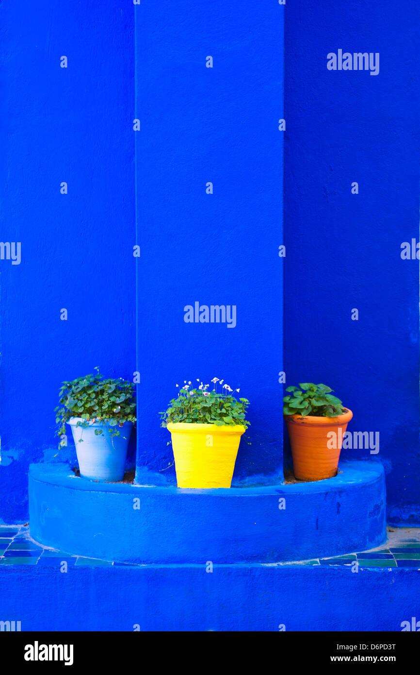 Plantes En Pots Et De Peinture Bleu Vif Majorelle Gardens