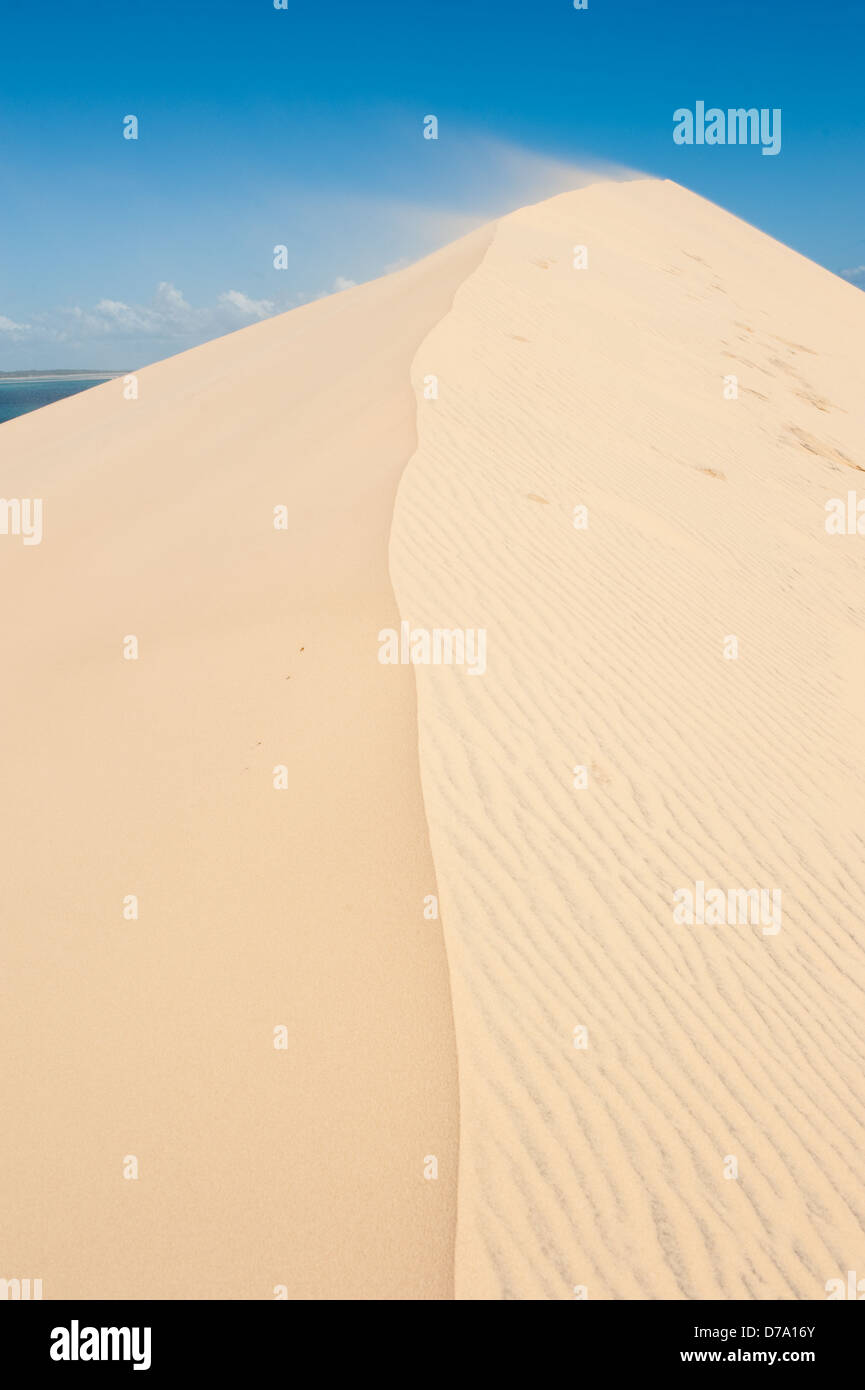 L'île de Bazaruto, dunes, au Mozambique Photo Stock
