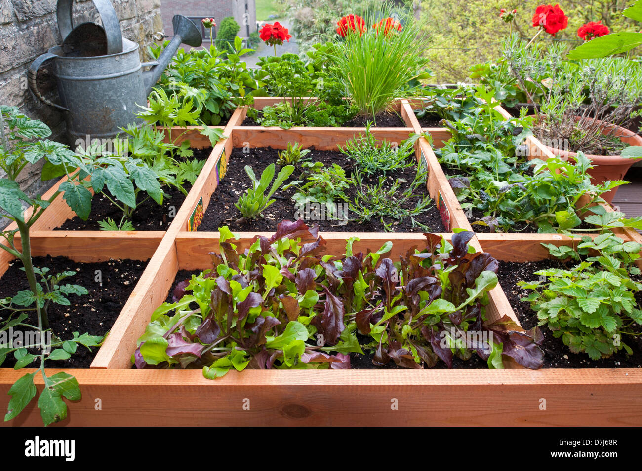 legumes a planter perfect legumes a planter en octobre dedans soccuper du potager lautomne with. Black Bedroom Furniture Sets. Home Design Ideas