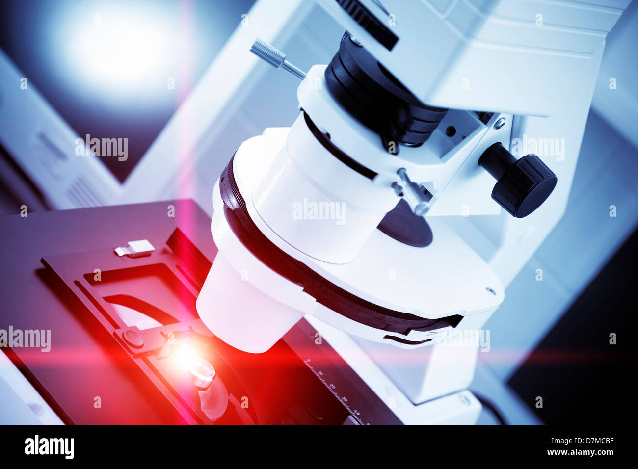 Microscope optique Banque D'Images