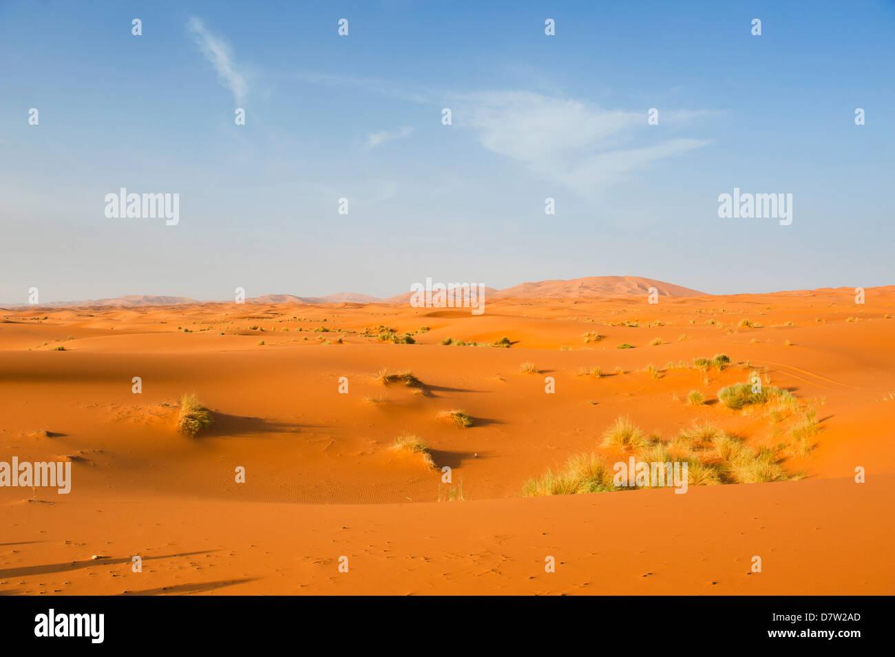 Paysage de dunes de sable au désert de l'Erg Chebbi, désert du Sahara, près de Merzouga, Maroc, Photo Stock