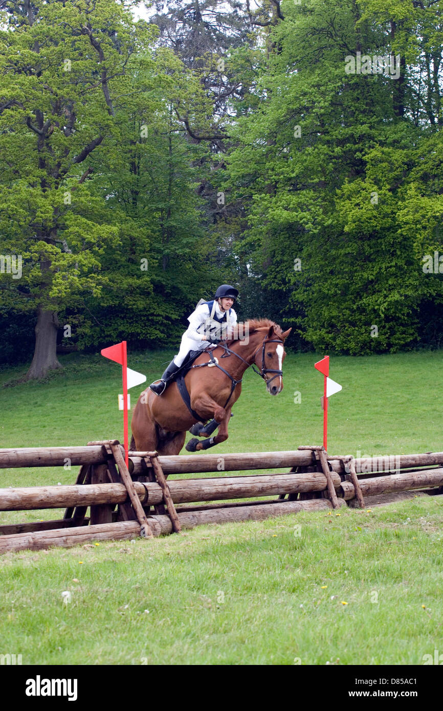 Hampshire: Equestrian event cross-country Photo Stock