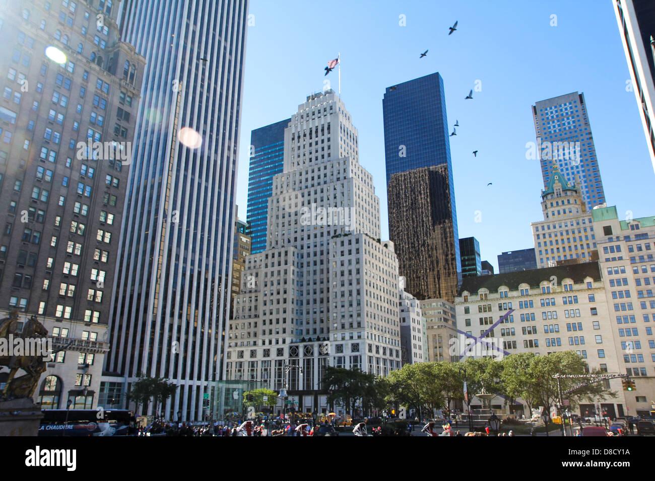 Grande scène de baston ciel oiseaux big apple américain Photo Stock