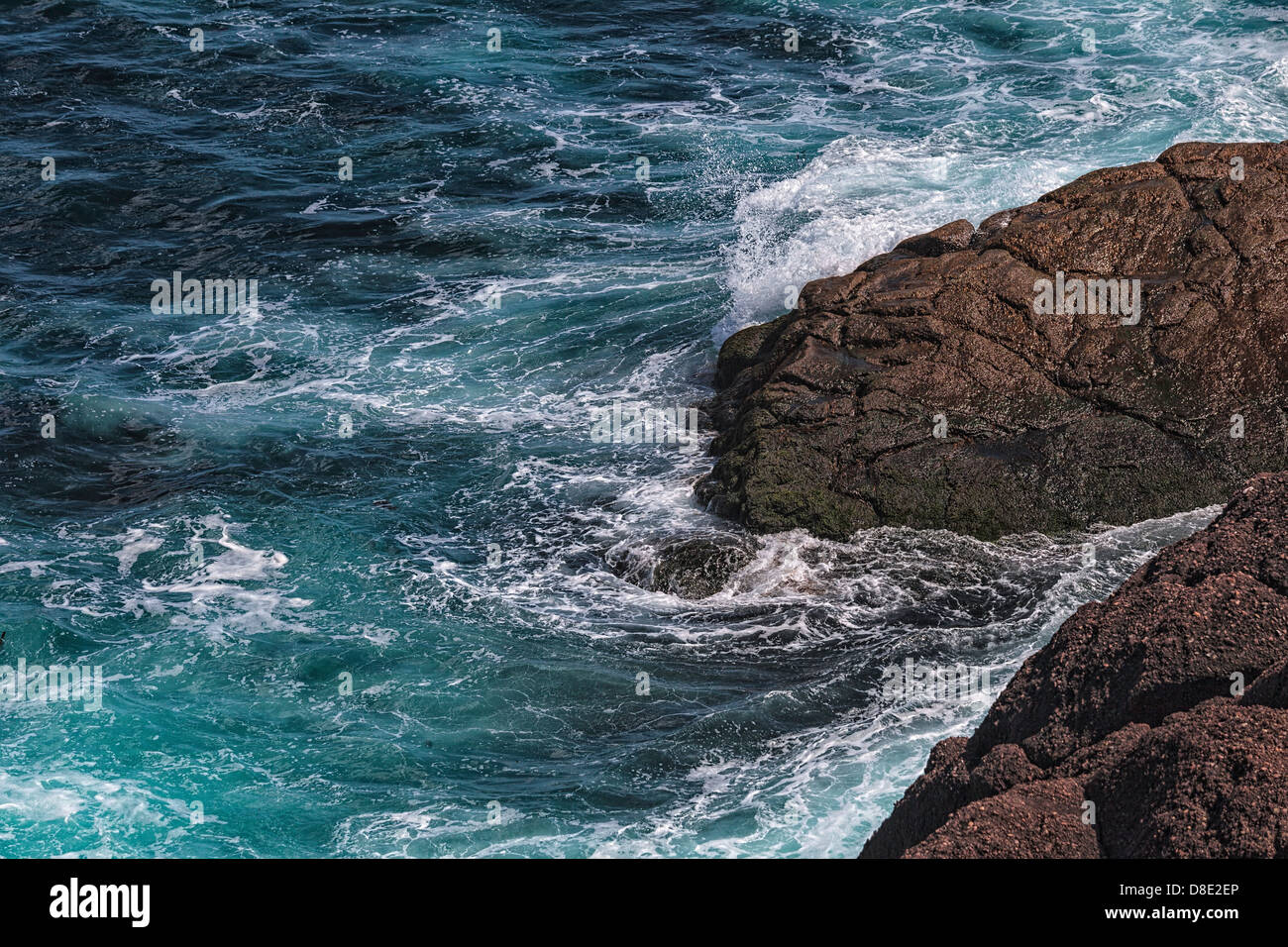 Océan violent Hits les rochers à Cape Spear, à Terre-Neuve Photo Stock
