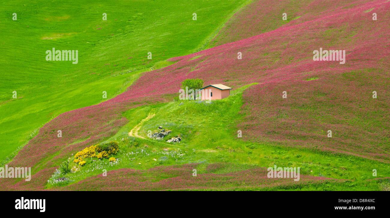 Sicile Paysage de printemps avec des fleurs au centre de la Sicile, Italie Photo Stock