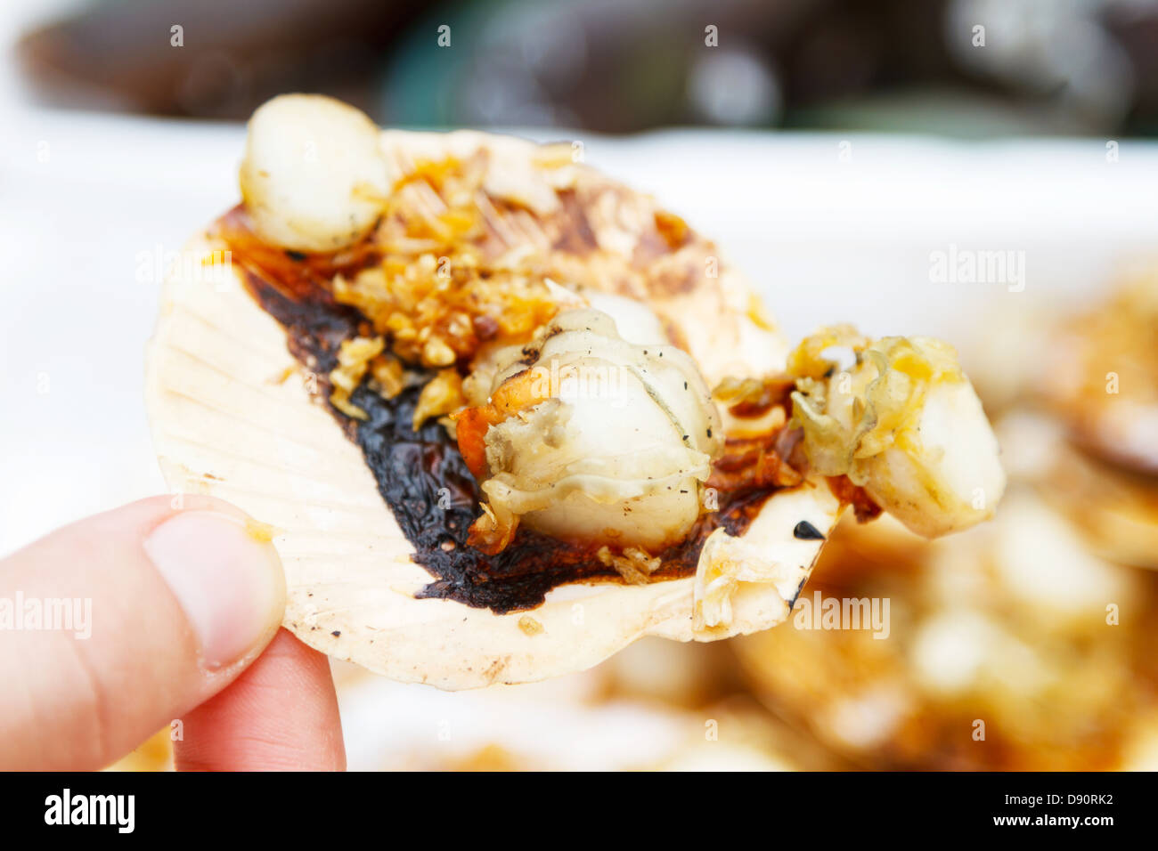 coquille de gril Photo Stock