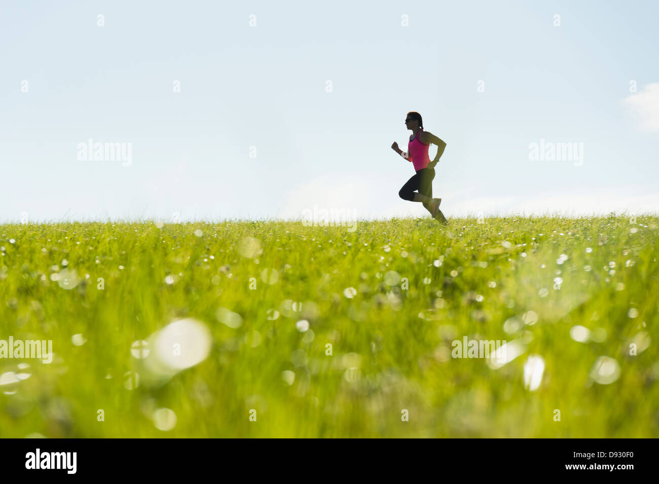 Woman jogging in meadow Photo Stock