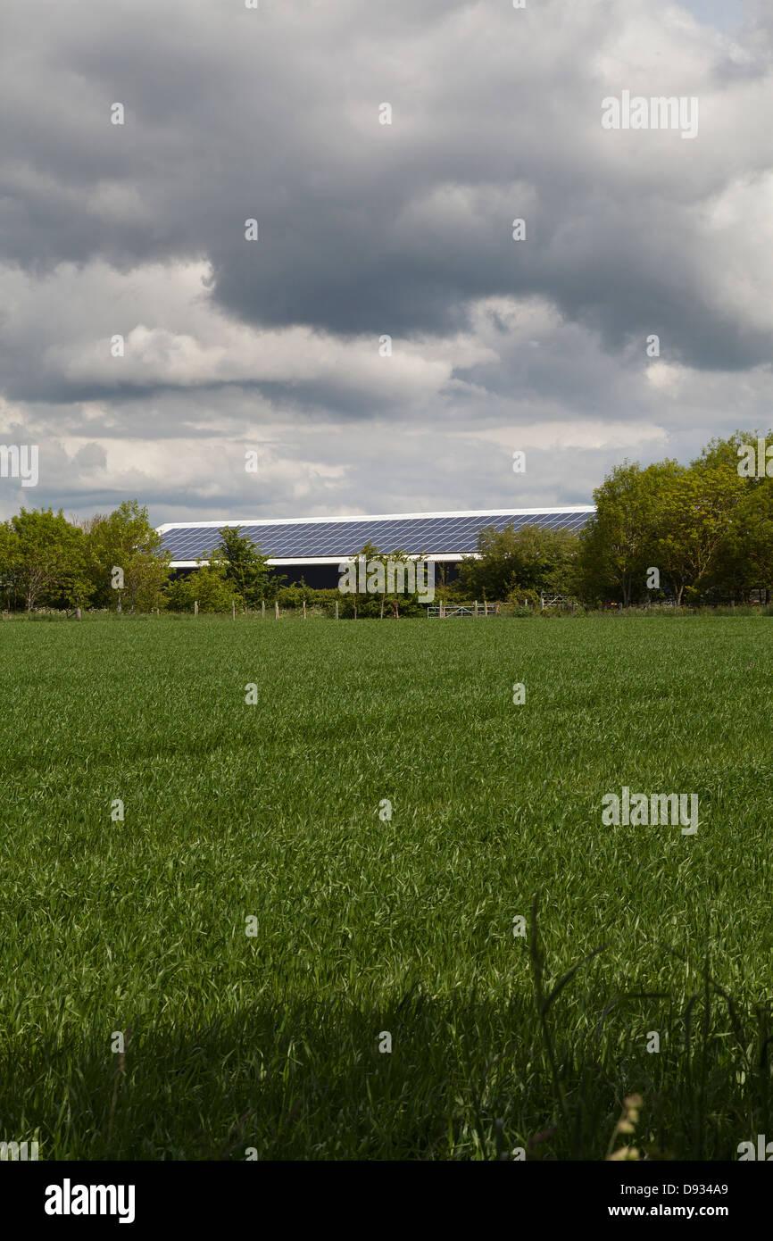 Panneaux solaires sur grand bâtiment de ferme Hampshire UK Photo Stock
