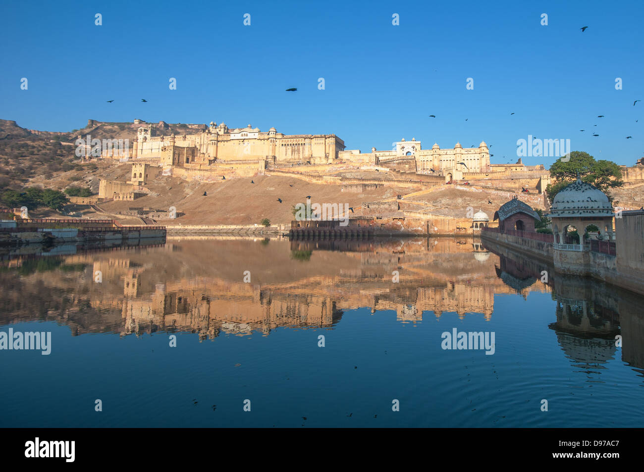 Fort Amber, Jaipur, Inde Photo Stock