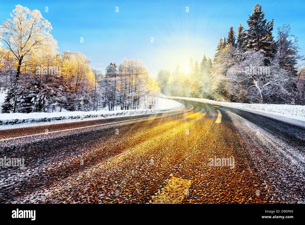 Chemin d'hiver en hiver avec la lumière du soleil qui reflète sur l'asphalte Photo Stock