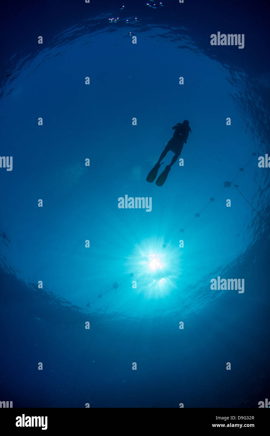 Silhouette d'un plongeur et sunball, sous l'oeil de poisson, l'Égypte, l'Afrique Photo Stock