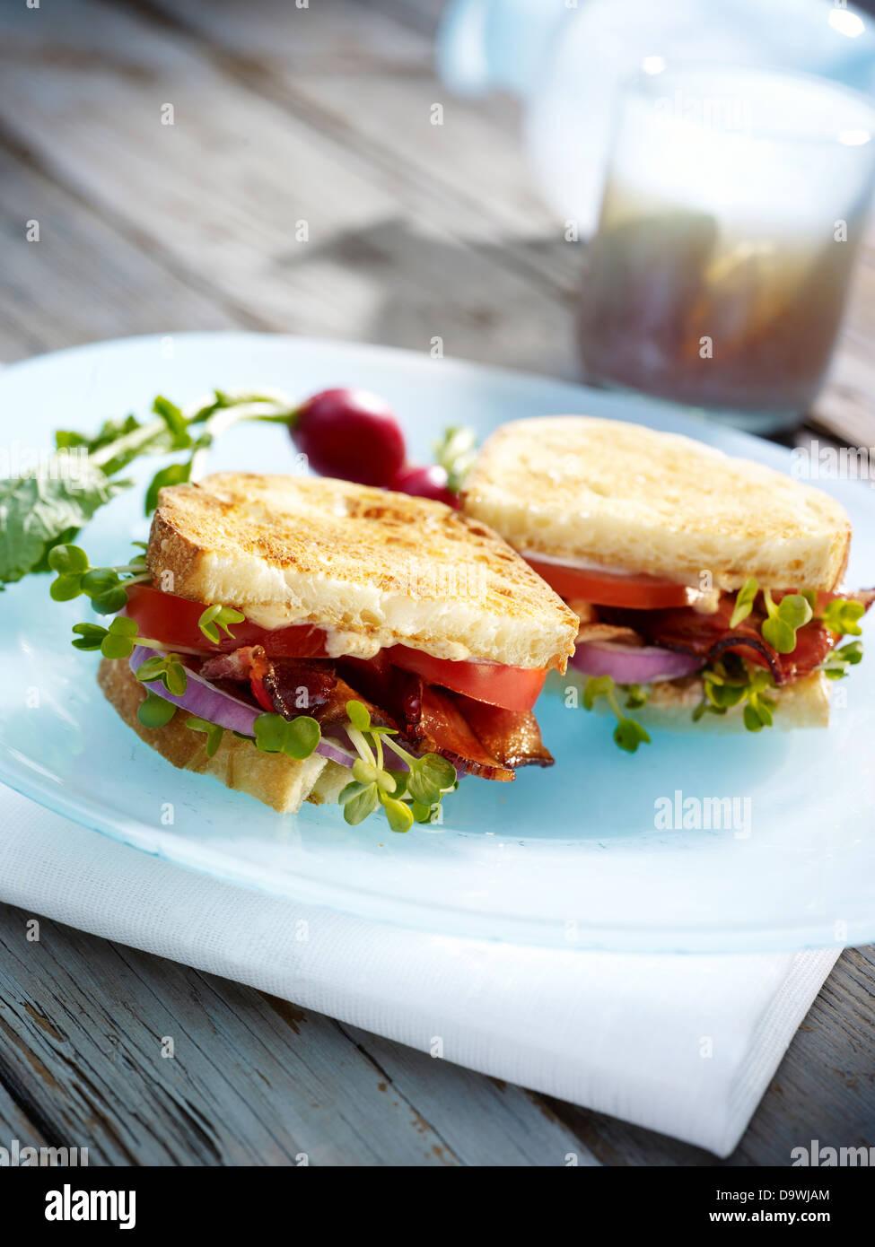 Sandwich gourmand Photo Stock