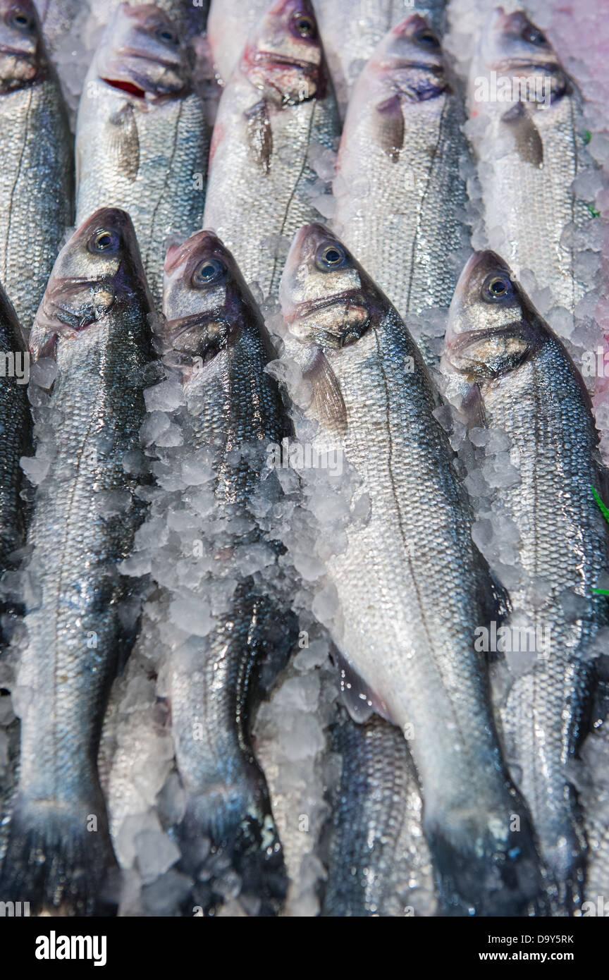 Poisson frais dans un marché aux poissons Banque D'Images