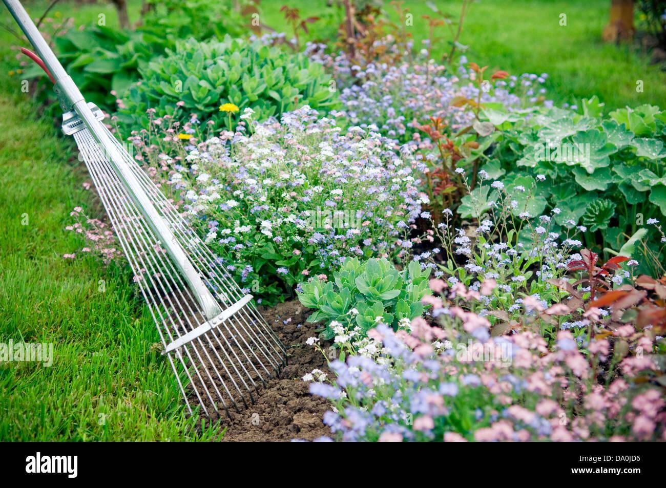 Détail de jardinage avec râteau fane Banque D'Images