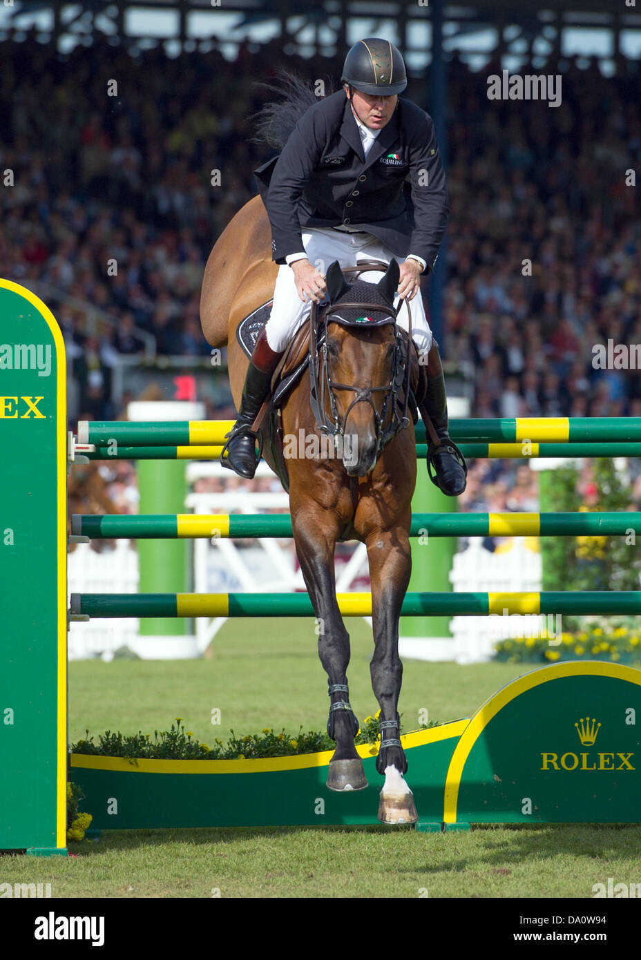 SHIRES BLENHEIM Chasseur Muserolle cavesson