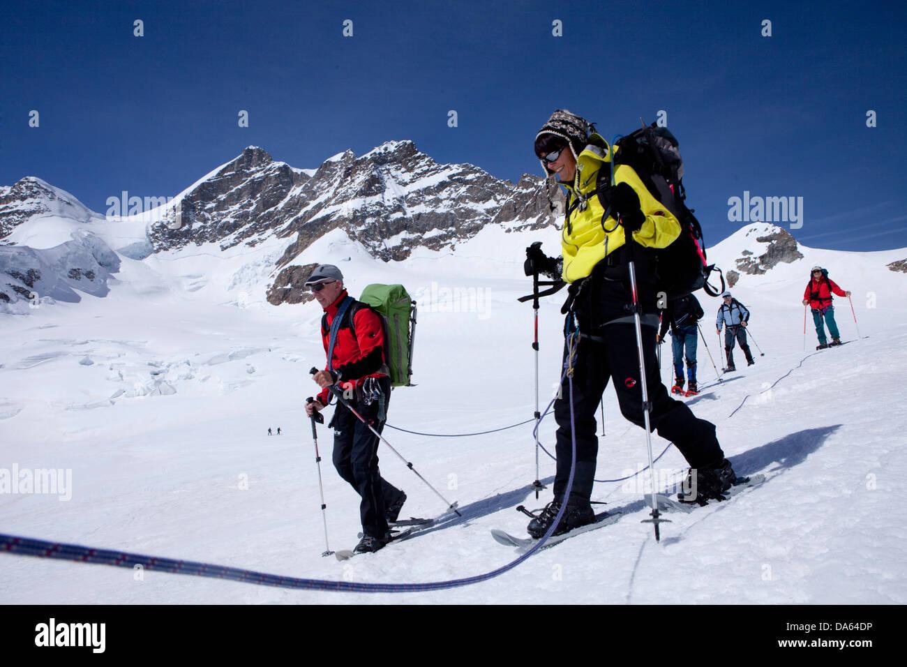 Visite guidée en raquettes, randonnée en raquettes, visite, excursion en montagne, Jungfraujoch, montagne, Photo Stock