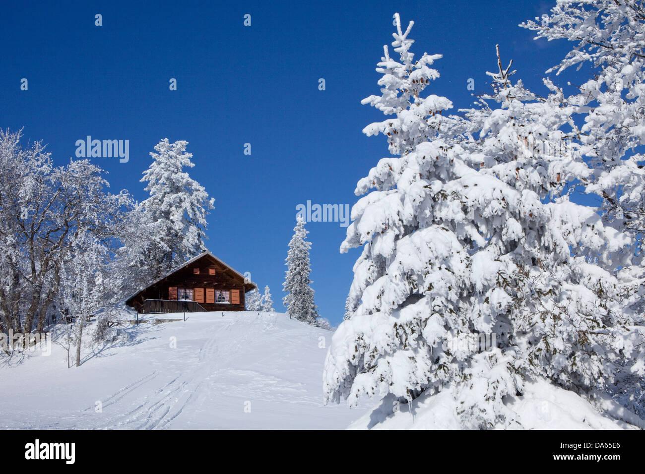Chalet d'été, bois d'hiver, montagne, montagne, paysage, paysage, hiver, canton, VD, Vaud, arbre, Photo Stock