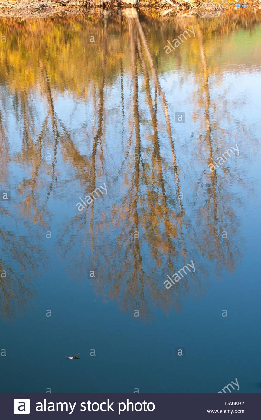 Lac en automne,Emilian Apennin toscan Photo Stock