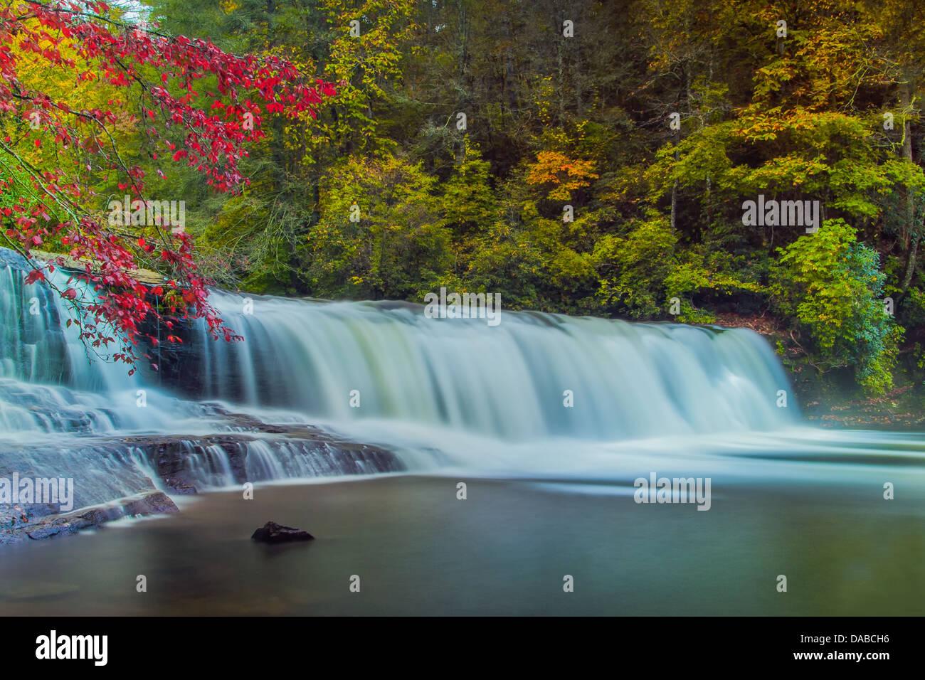 Hooker Falls montre la beauté de Dupont forêt près de Brevard, NC. Une courte promenade vers les chutes donne aux Banque D'Images