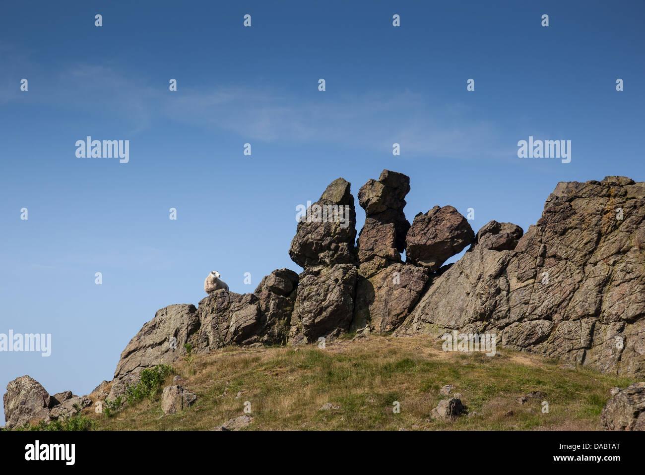 Trois doigts Rock le Caer Caradoc Hill près de Church Stretton, Shropshire, avec des moutons et permanent à Photo Stock