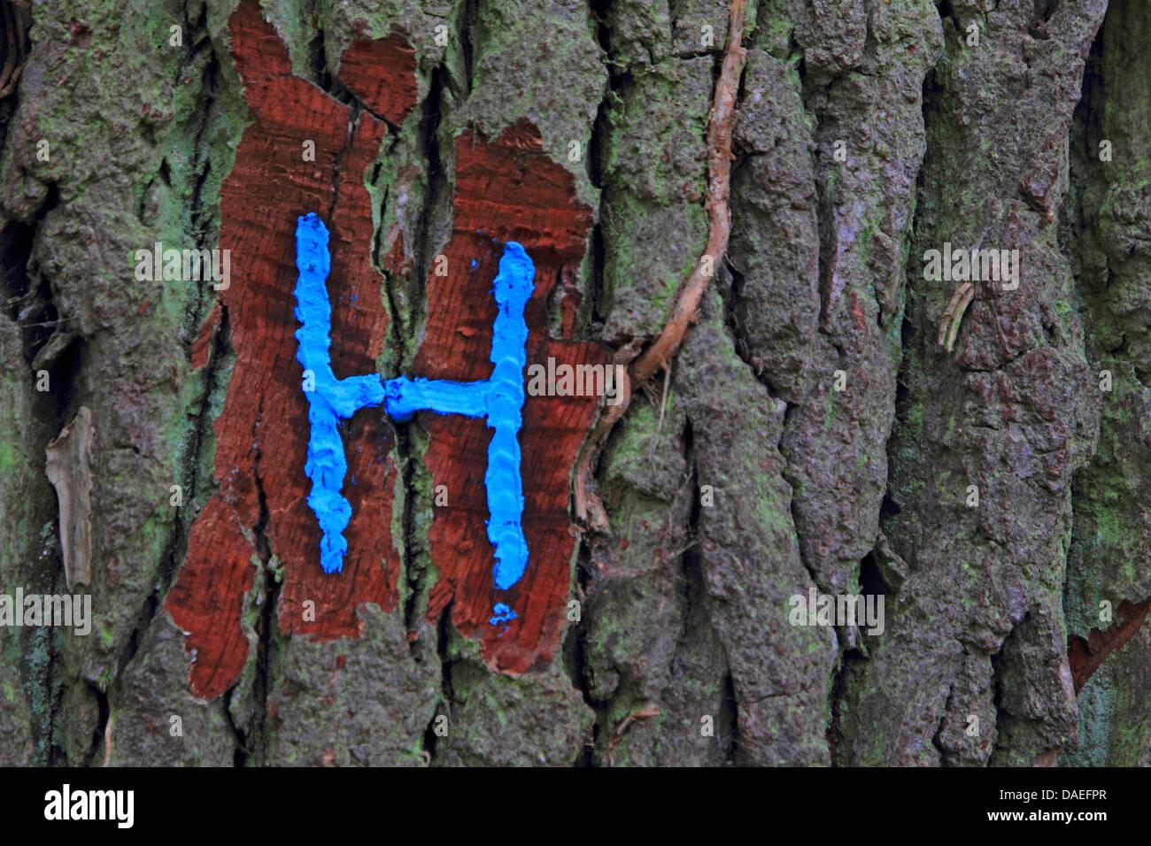 Lettre marquage sur un arbre, Allemagne Photo Stock