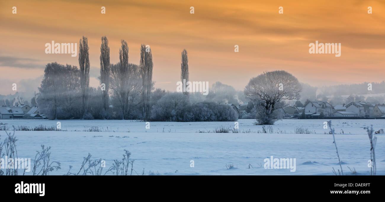 Paysage de neige avec brouillard au sol dans la lumière du matin, l'Allemagne, Bavière, Isental Banque D'Images