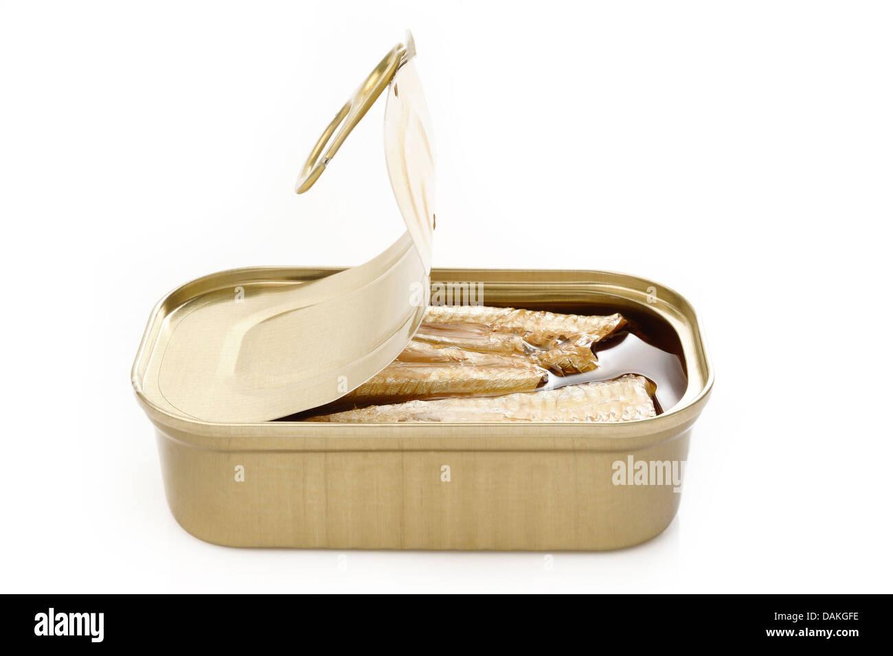 Sardines à l'huile d'olive extra vierge et de chili sur fond blanc Photo Stock