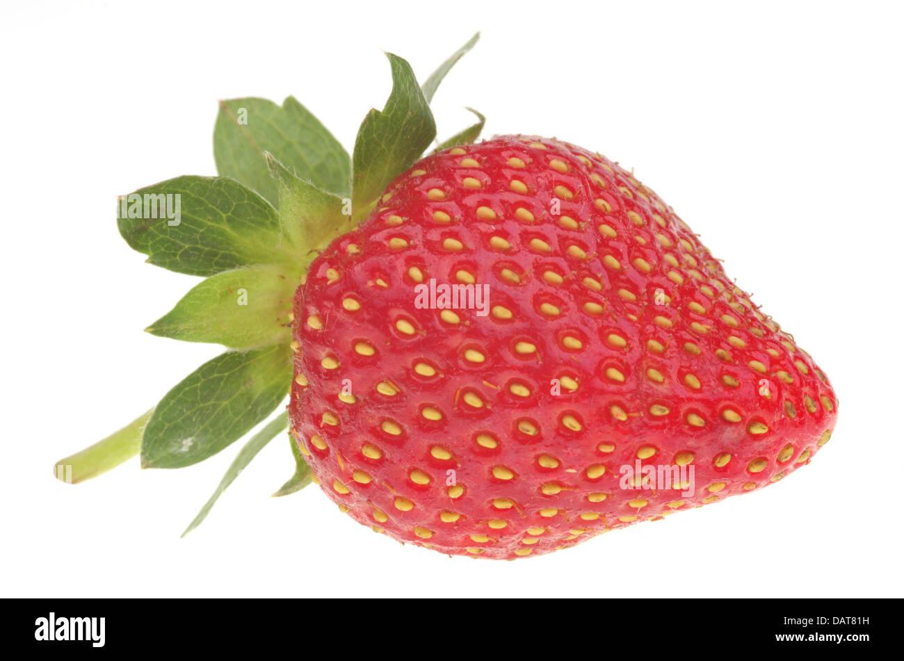 Des fraises fraîches isolées sur fond blanc Photo Stock
