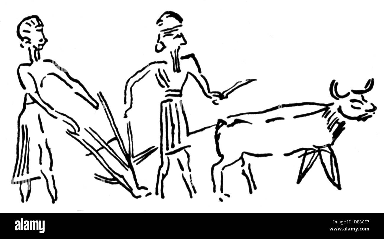 L Agriculture Les Travaux Agricoles Le Labour Les Agriculteurs