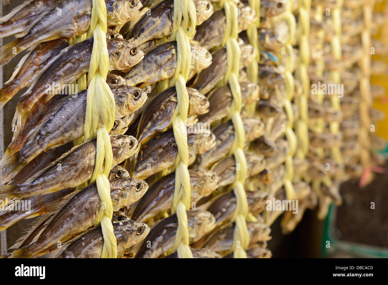 Poissons séchés au marché de Gwangjang à Séoul, Corée du Sud. Photo Stock