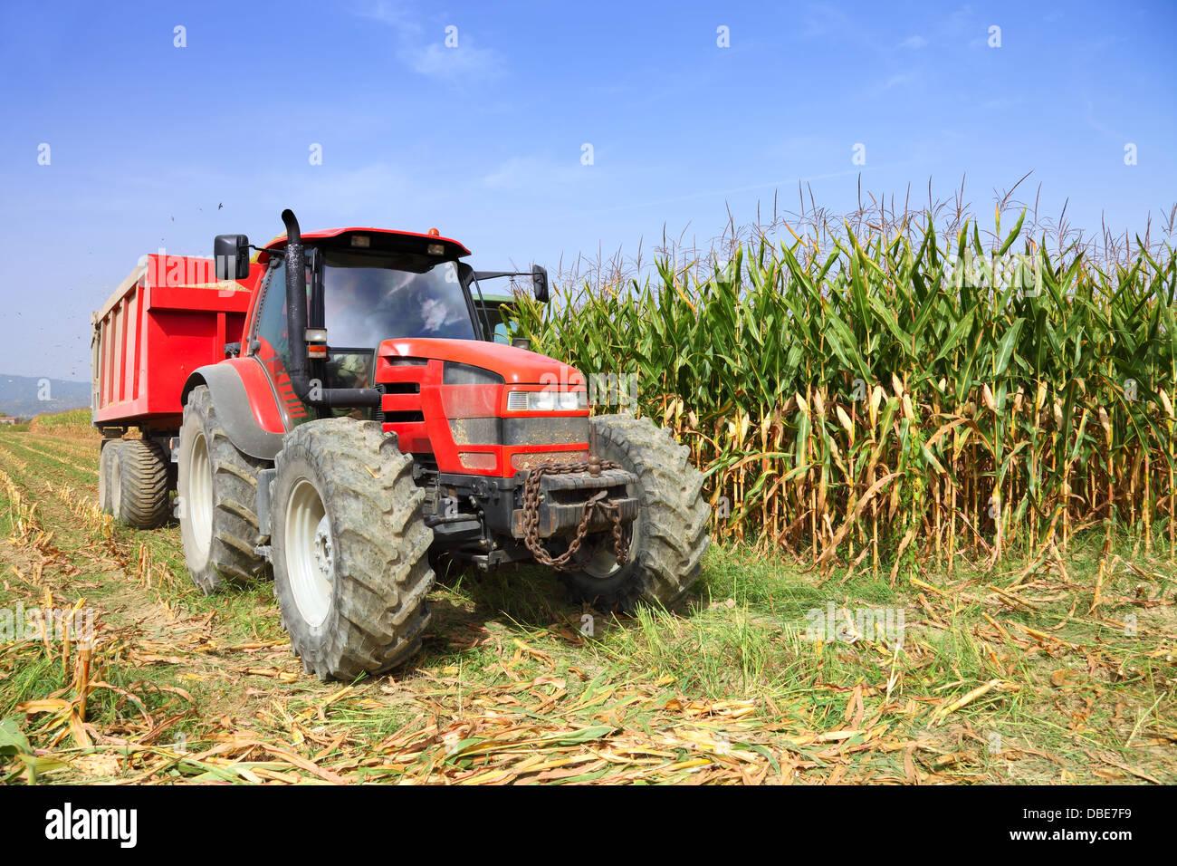 L'agriculture, de l'agriculture tracteur Photo Stock