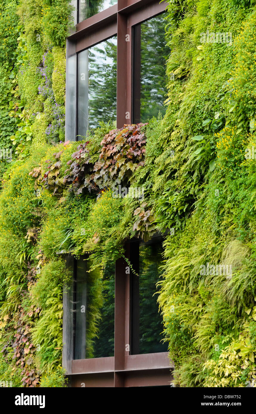 Jardin vertical, musée du quai Branly, Paris, France. design ...