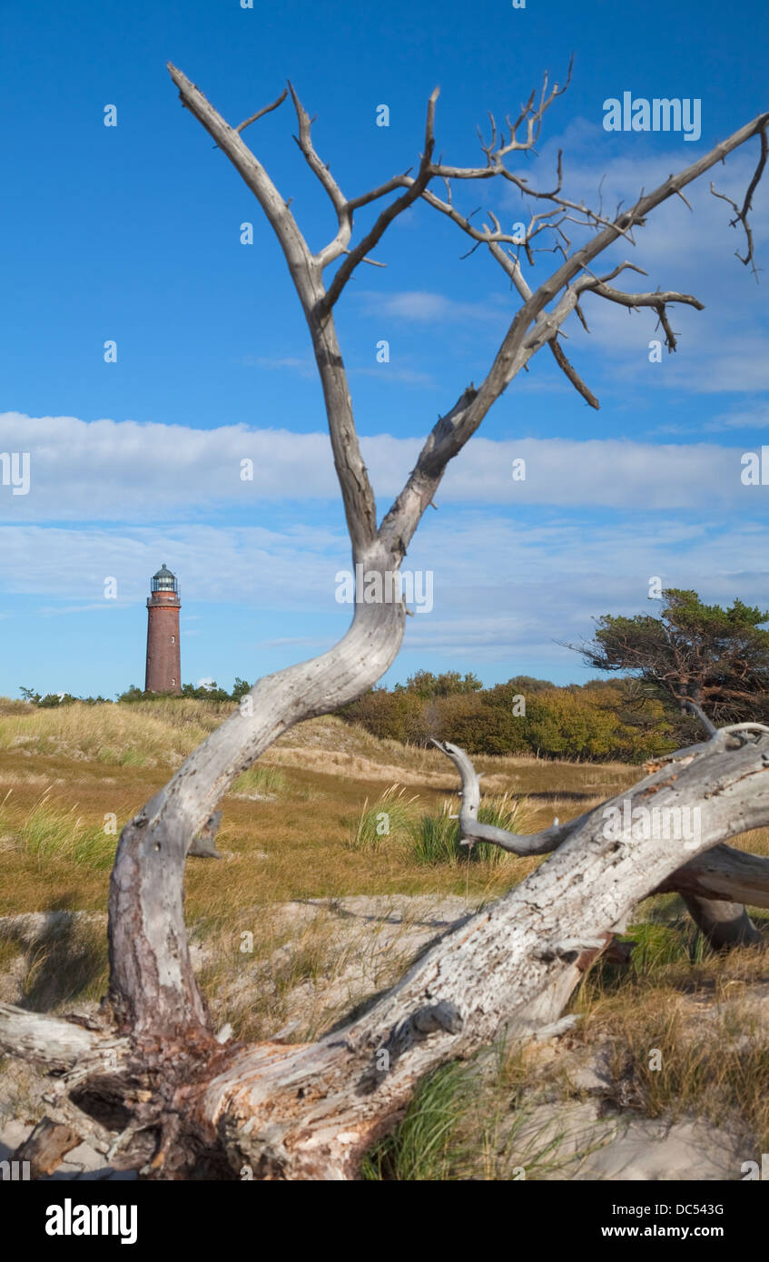 Europa, Deutschland, Mecklenburg-Vorpommern,Fischland-Darss-Zingst Prerow Darsser Ort,phare Banque D'Images