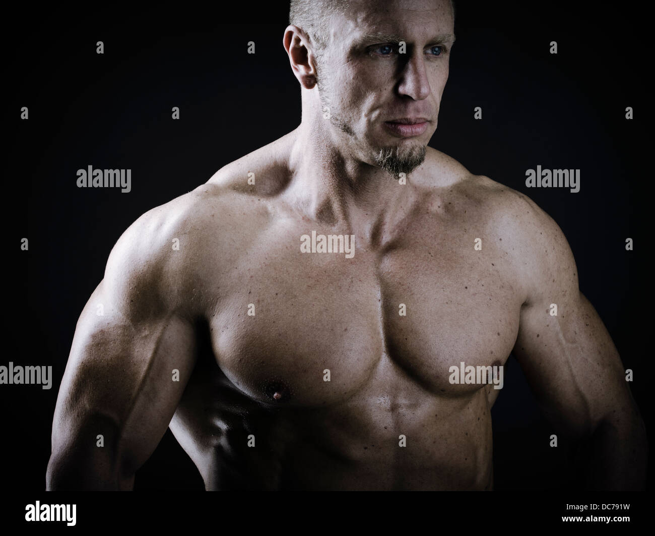 Male bodybuilder Photo Stock