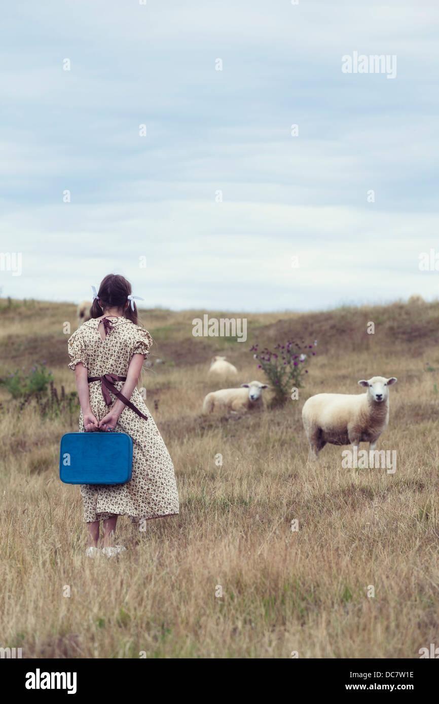Une fille dans une robe vintage sur une prairie avec moutons Photo Stock