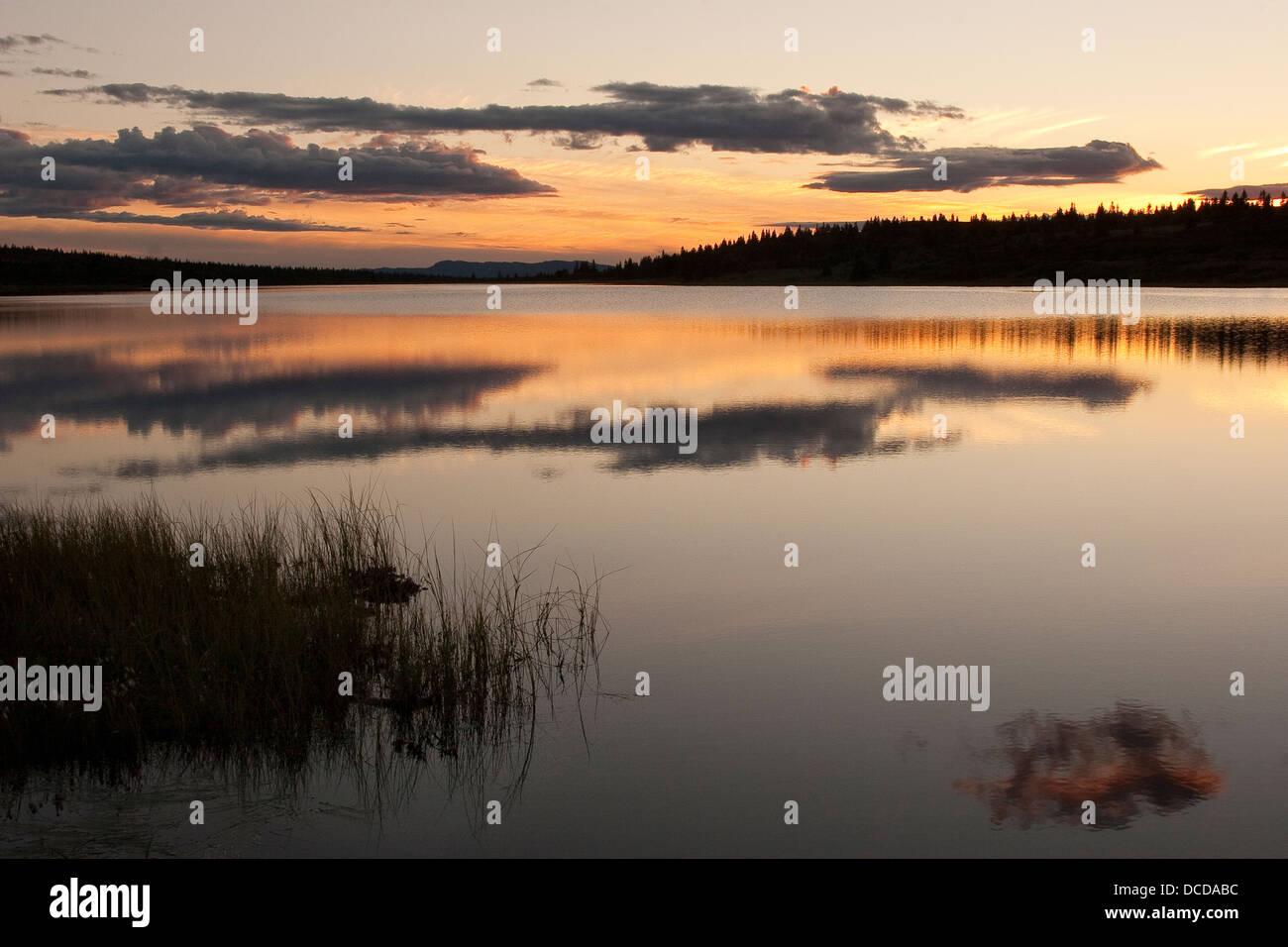 Abendstimmung une einem voir dans Skandinavien, Norwegen, Sonnenuntergang, soirée ambiance dans un lac en Scandinavie, la Norvège, le coucher du soleil Banque D'Images