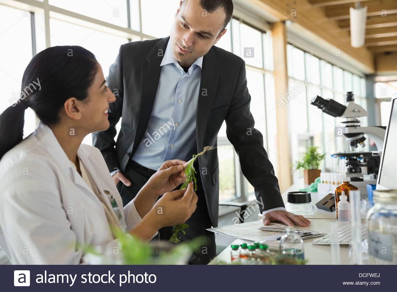 Businessman discuter avec le botaniste in laboratory Photo Stock