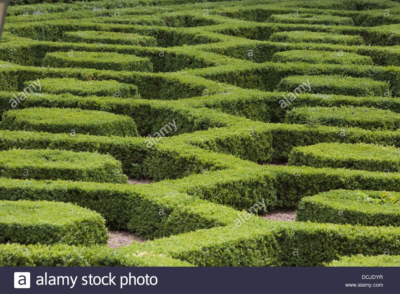 Labyrinthe dans un jardin botanique, Bruxelles, Belgique Banque D ...