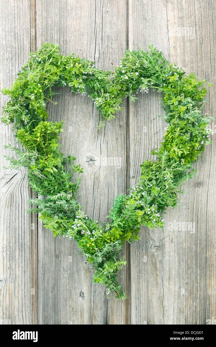 Différentes Variétés De Thym un cœur décoratif fait of différentes variétés de thym