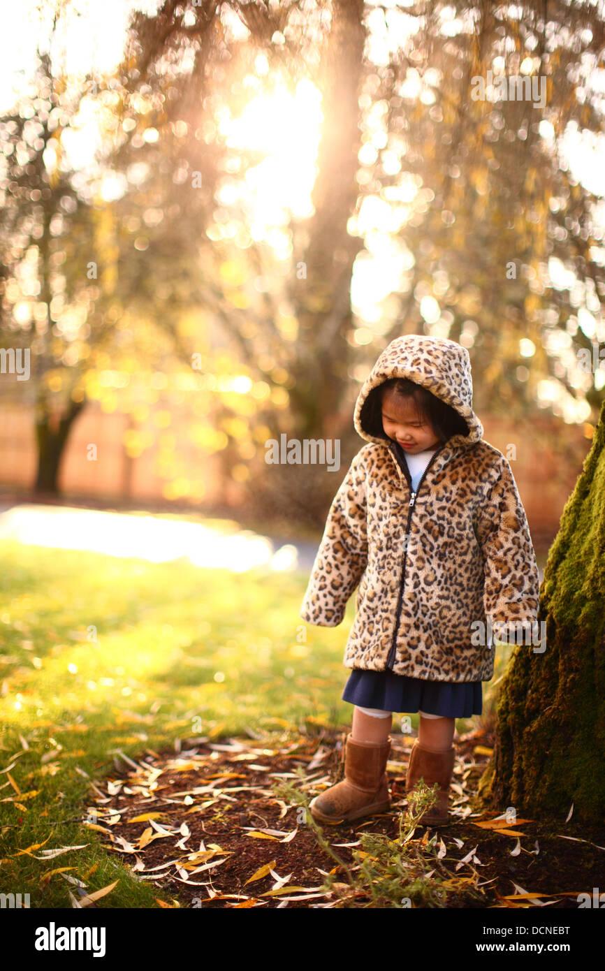 Jeune fille d'arbres à l'automne Photo Stock