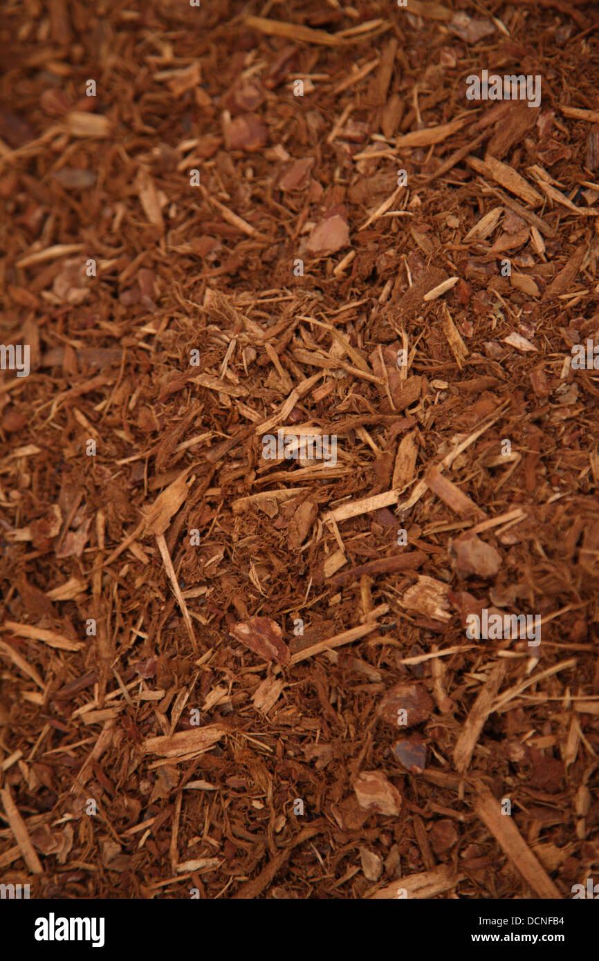 Arrière-plan de jardin le paillis d'écorce Photo Stock