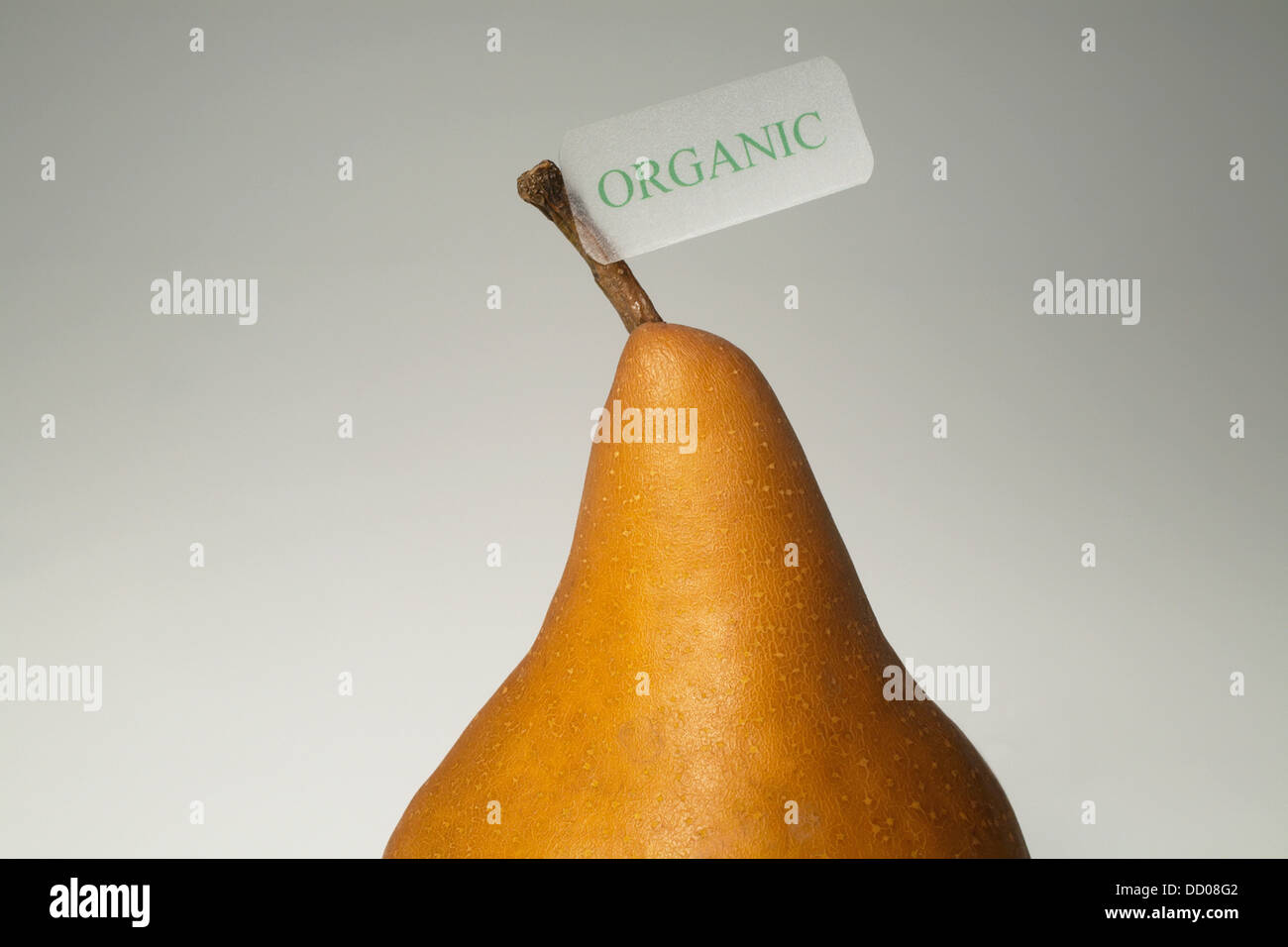 Un Bosch Pear With an Organic Label ; Waterloo, Québec, Canada Photo Stock