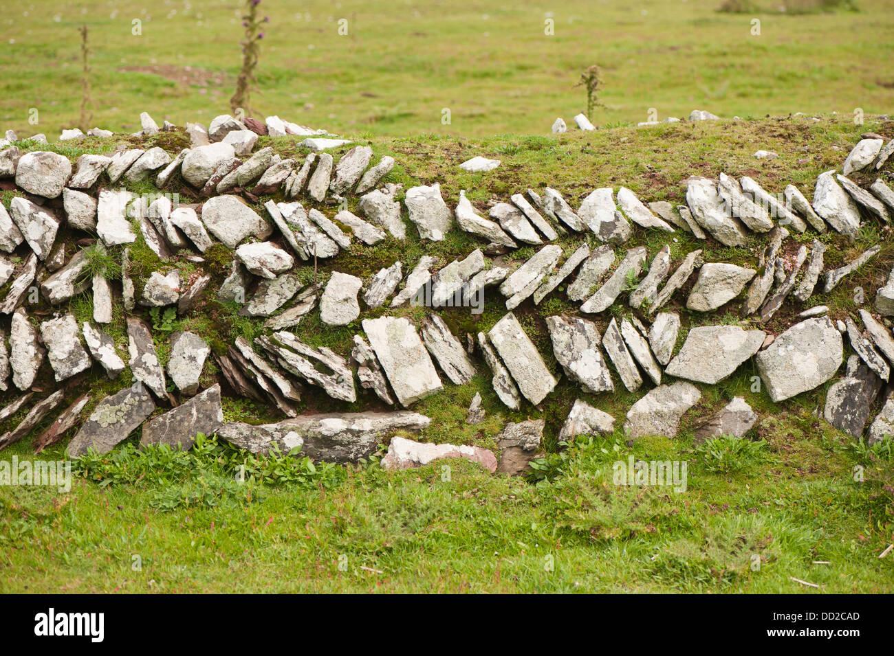 Dessins En Mur De Pierre Skokholm Island South Pembrokeshire Pays