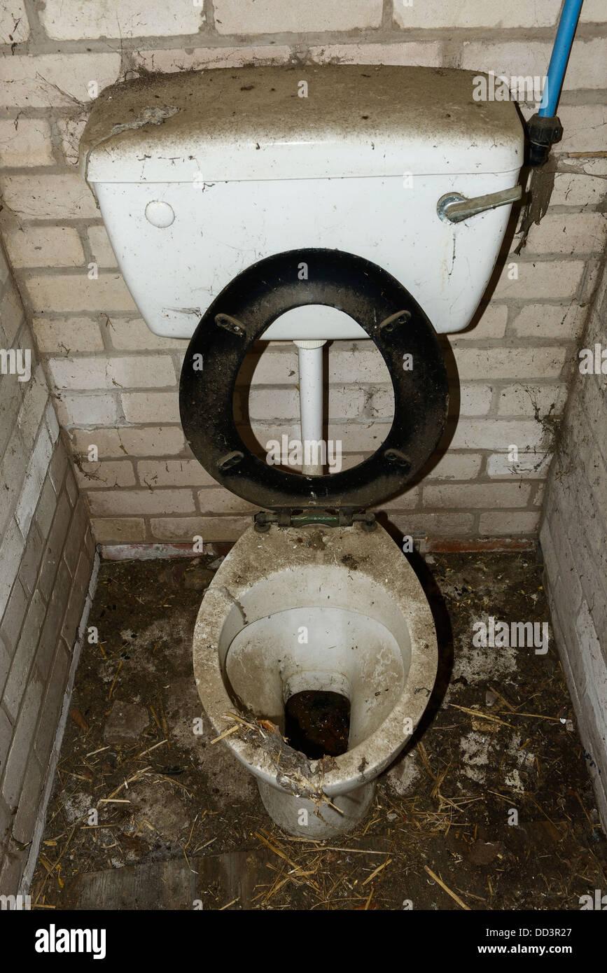Toilettes sales et poussiéreux dans le besoin d'un nettoyage Photo Stock