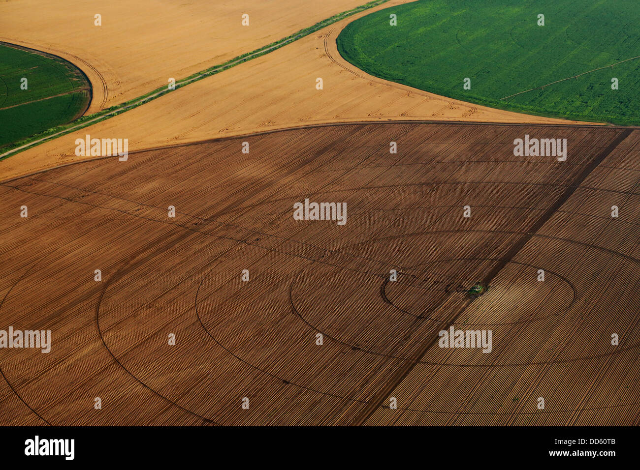 Patchwork Paysage, Croatie, Slavonie, Europe Photo Stock