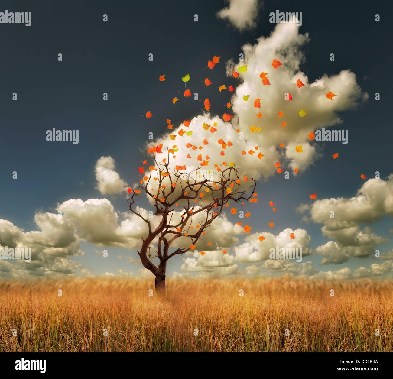 Paysage d'automne avec Lonely Tree et feuilles colorées Photo Stock