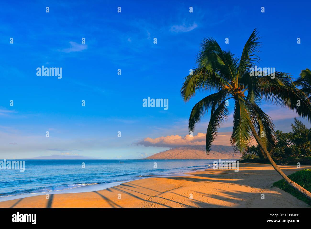 Lever du soleil à Kamaole Beach Park, Kihei, Maui, Hawaï Photo Stock