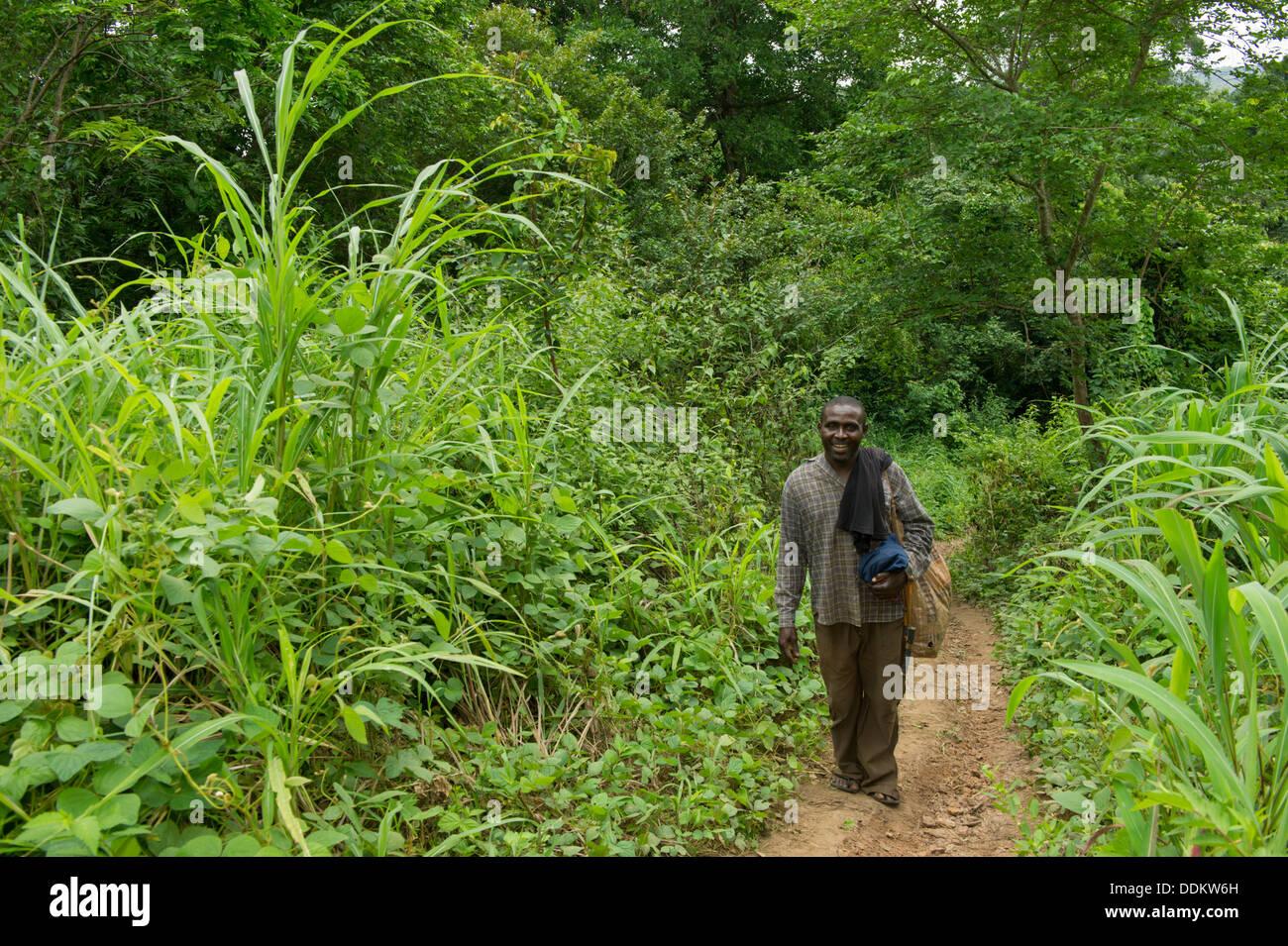 Piéton sur un mince chemin à travers une végétation luxuriante dans Otutulu, Nigéria Photo Stock