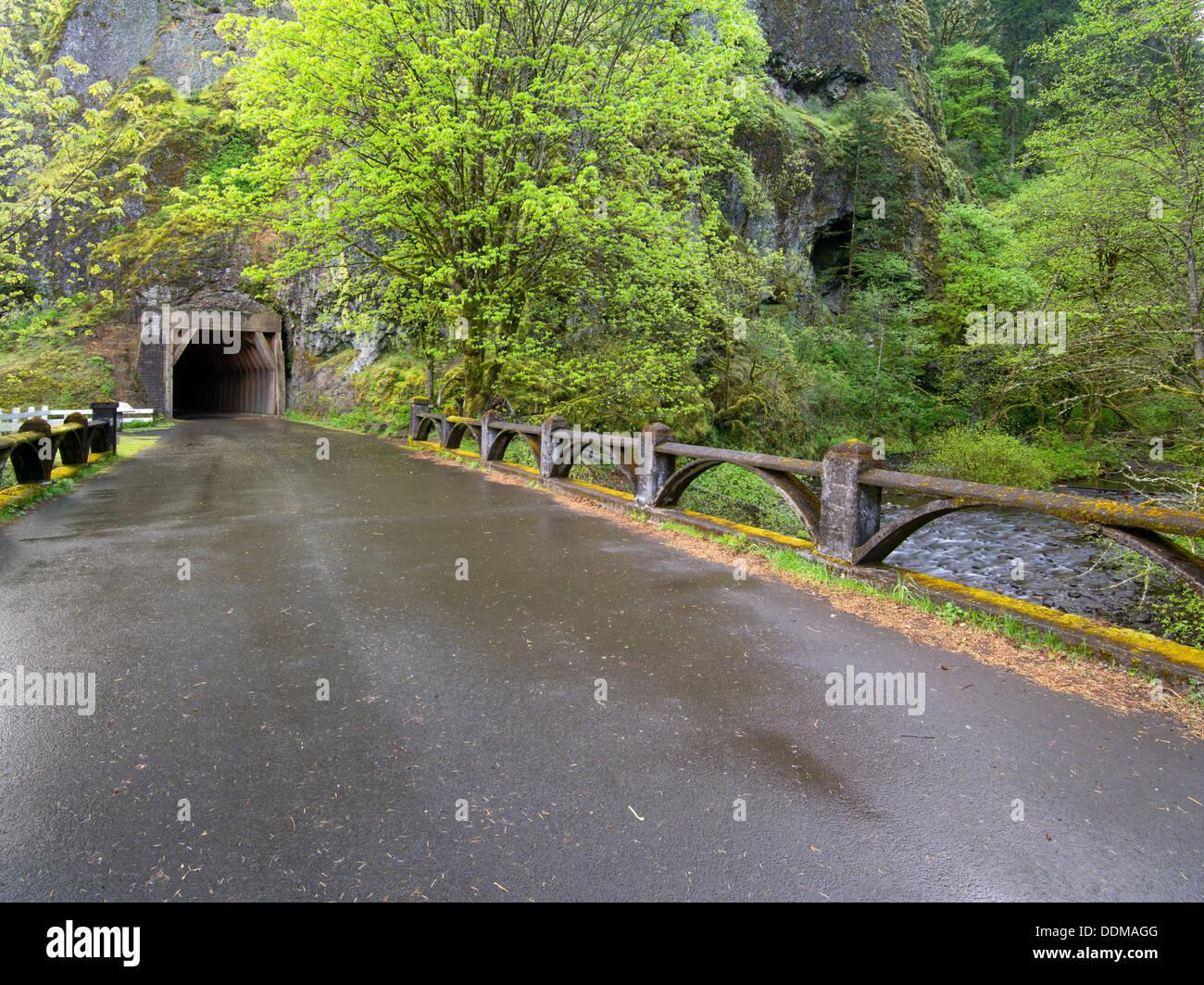 Vieux routier de la rivière Columbia et tunnel. Columbia River Gorge National Scenic Area. Oregon Photo Stock